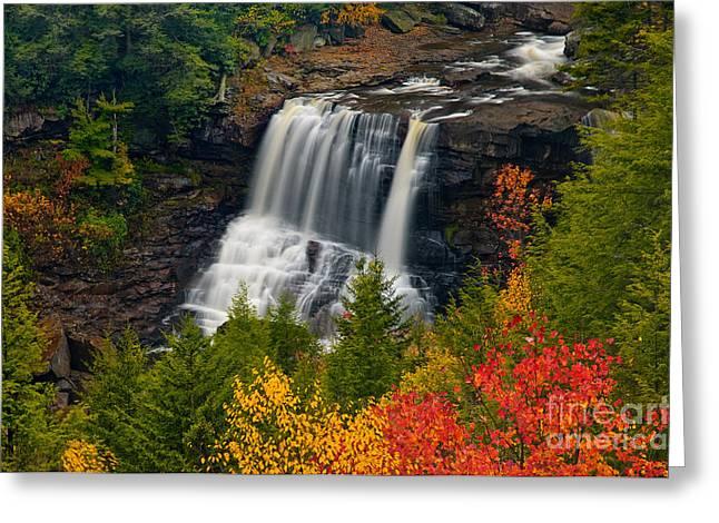 Blackwater Falls D300_07659 Greeting Card by Kevin Funk