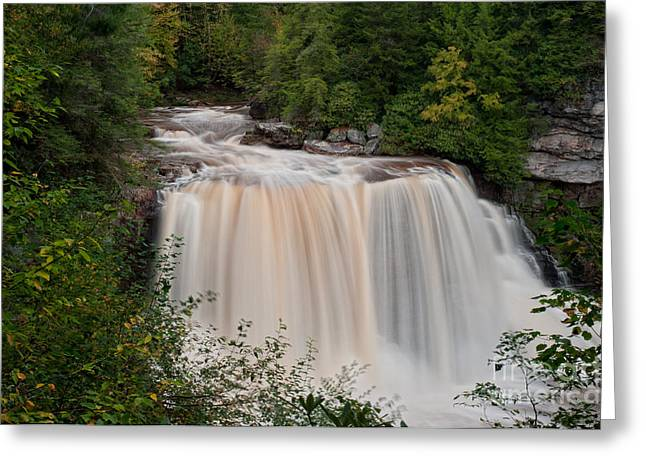 West Virginia Greeting Cards - Blackwater Falls D300_12414 Greeting Card by Kevin Funk