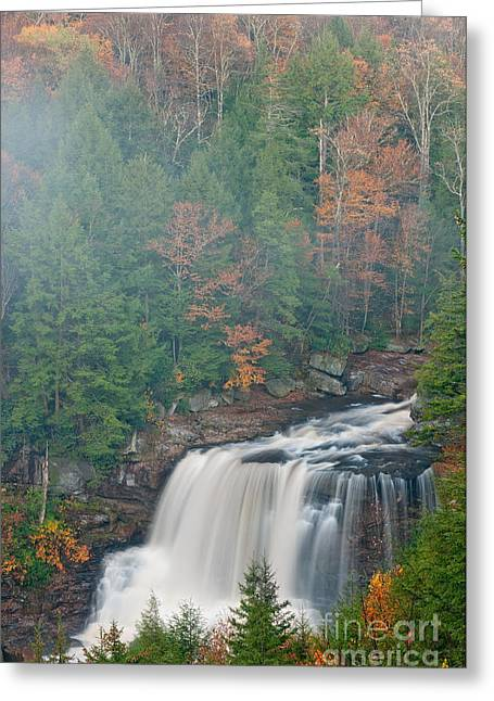 National Forest Greeting Cards - Blackwater Falls D300_15998 Greeting Card by Kevin Funk