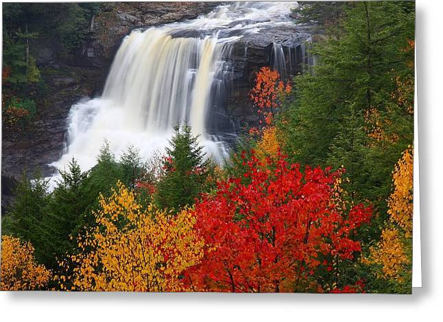 Blackwater falls in autumn Greeting Card by Jetson Nguyen