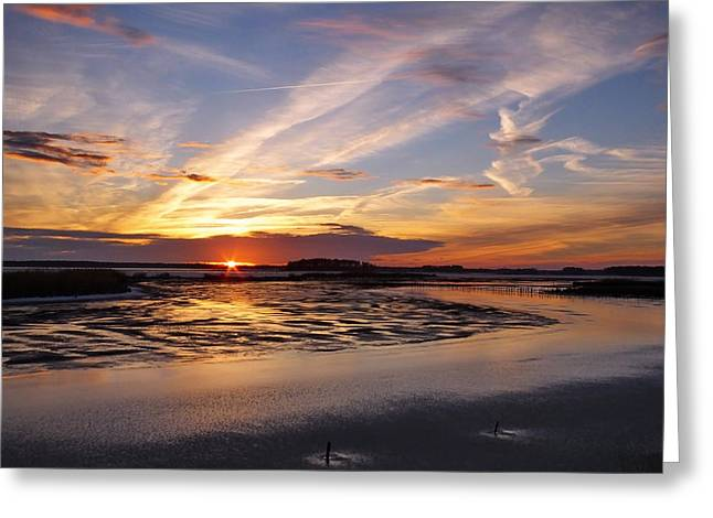 Snowy Evening Greeting Cards - Blackwater National Wildlife Refuge Sunset 4 Greeting Card by Francie Davis