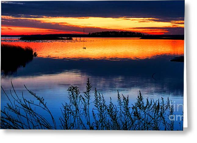 Sunset Scenes. Greeting Cards - Blackwater Greeting Card by Olivier Le Queinec