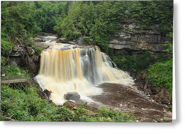 Tannic Greeting Cards - Blackwater River Falls West Virginia Greeting Card by Carol VanDyke