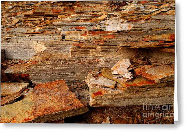 Arkansas Greeting Cards - Blakley Sandstone Greeting Card by Susan Leavines Harris