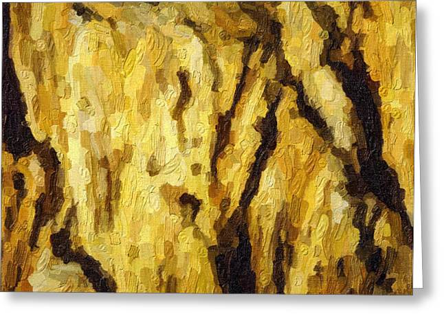 Blanchard Springs Caverns-Arkansas Series 04 Greeting Card by David Allen Pierson