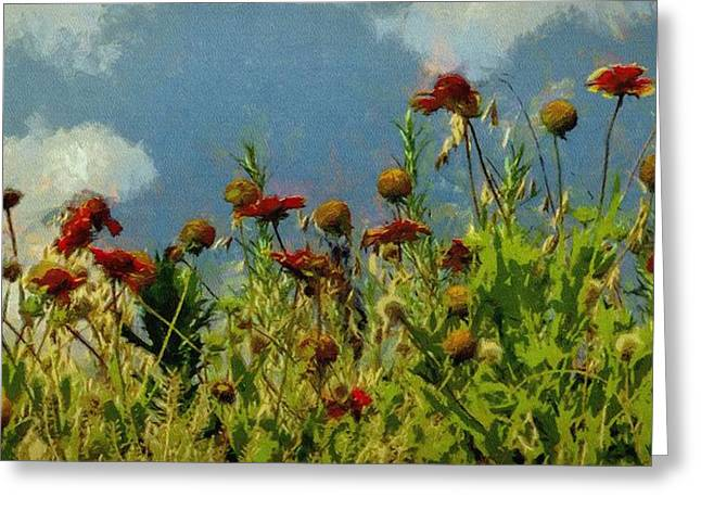 Blanketing The Sky Greeting Card by Jeff Kolker