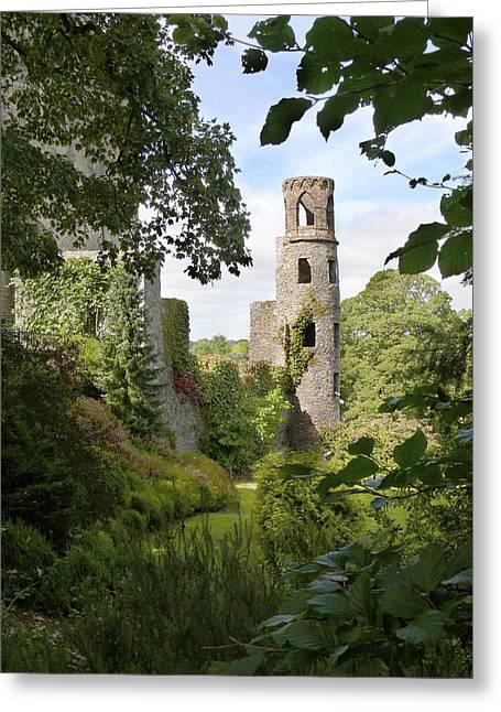 Stones Digital Greeting Cards - Blarney Castle 2 Greeting Card by Mike McGlothlen