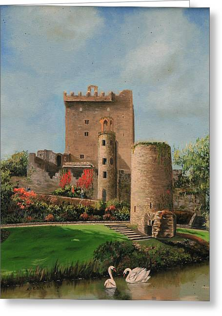 Castle. Birds Greeting Cards - Blarney Castle Ireland Greeting Card by Cecilia  Brendel