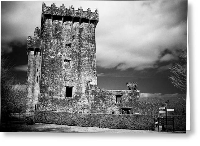Blarney Castle Ireland Greeting Card by Gloria De los Santos