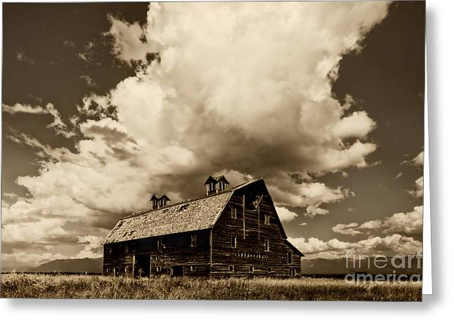 Blasdel Barn Greeting Card by Mark Kiver