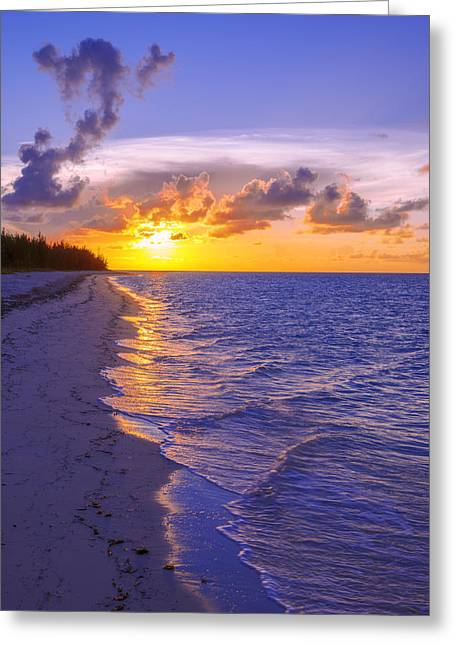 Ocean Shore Greeting Cards - Blaze Greeting Card by Chad Dutson