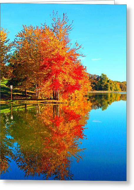 Get Well Card Framed Prints Greeting Cards - Blazing Autumn Color Greeting Card by Lorna Rogers Photography