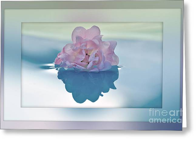 Reflections Of Sun In Water Greeting Cards - Blend of Pastels Greeting Card by Kaye Menner