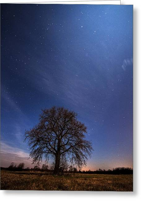 Moonscape Greeting Cards - Blessed by the moon Greeting Card by Davorin Mance