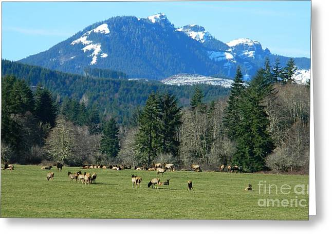 Wapato Photographs Greeting Cards - Blessed in the Valley Greeting Card by Chalet Roome-Rigdon