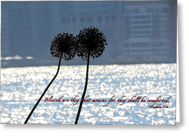Terry Wallace Greeting Cards - Blessed With Comfort Greeting Card by Terry Wallace