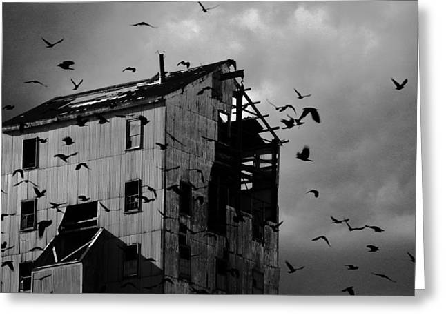 Ominous Sky Greeting Cards - Blighted Urban Light Greeting Card by Gothicolors Donna Snyder