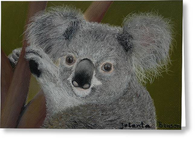 Blinky Greeting Cards - Blinky Bill Greeting Card by Jolanta Benson
