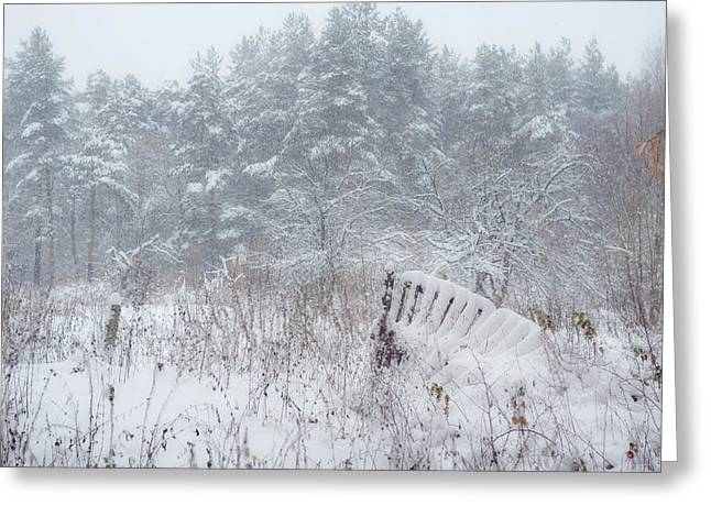 Russian Nature Greeting Cards - Blizzard in Late Autumn Greeting Card by Jenny Rainbow