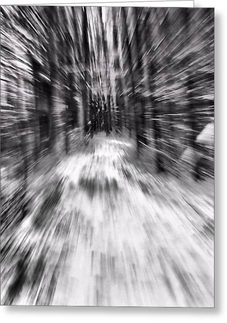 Warp Greeting Cards - Blizzard In The Forest Greeting Card by Dan Sproul