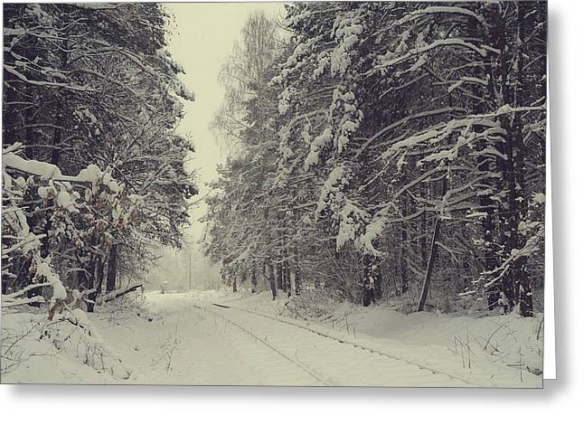 Blizzard In The Winter Woods Greeting Card by Jenny Rainbow