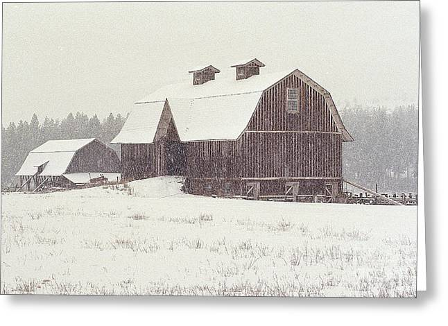 Blizzard Is On Greeting Card by Sharon Elliott