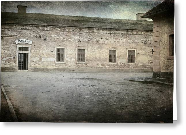 Concentration Greeting Cards - Block A Greeting Card by Joan Carroll
