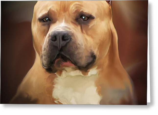 Blond Pit Bull by Spano Greeting Card by Michael Spano