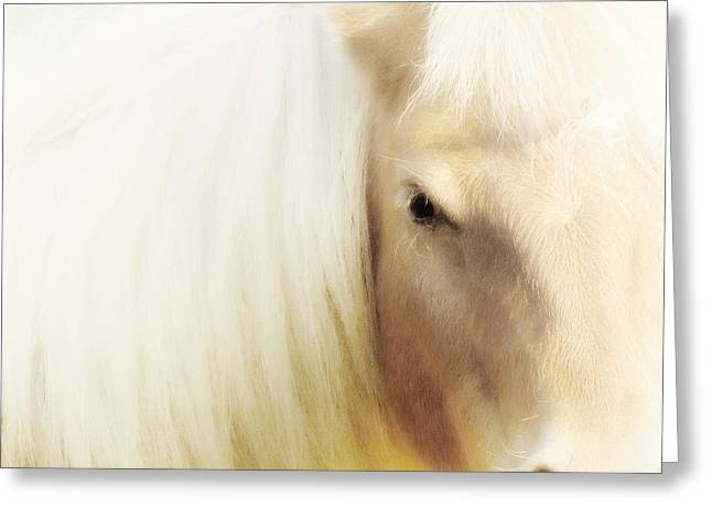 Pictures Of Horses Greeting Cards - Blondie Greeting Card by Amy Tyler