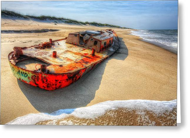 Pea Island Greeting Cards - Blood and Guts I - Outer Banks Greeting Card by Dan Carmichael