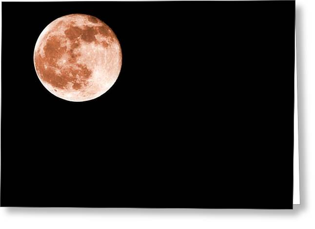 Blood Moon Greeting Cards - Blood Moon 2014 Greeting Card by Dan Sproul