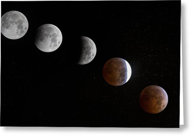 Blood Moon Greeting Cards - Blood Moon Greeting Card by Angie Vogel
