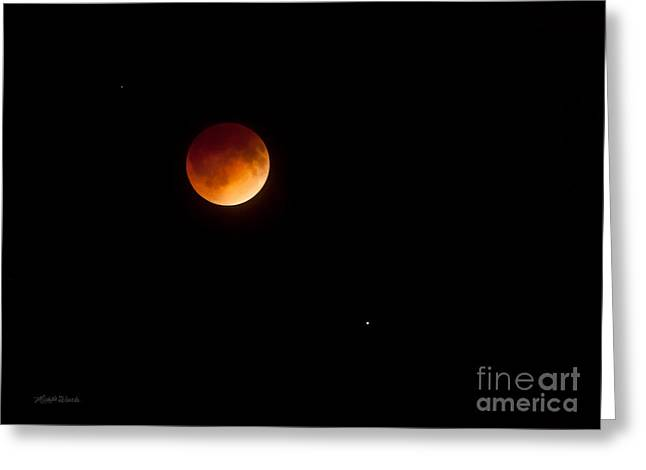 Blood Moon Greeting Cards - Blood Moon Eclipse S Florida 0315AM April 15 2014 Greeting Card by Michelle Wiarda