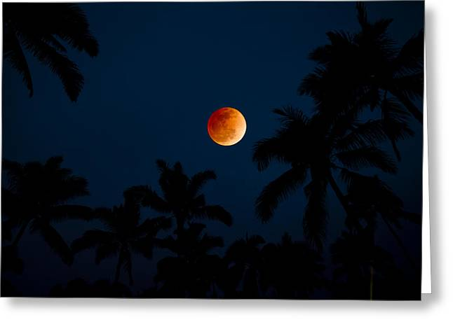 Blood Moon In The Tropcs Greeting Card by Sean Davey