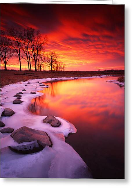 Hack-ma-tack National Wildlife Refuge Greeting Cards - Blood Sunset Greeting Card by Ray Mathis