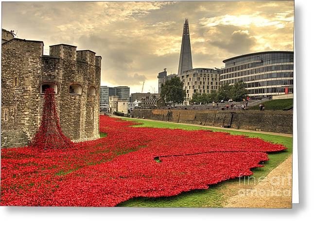 Fallen Soldiers Greeting Cards - Blood Swept Lands Greeting Card by Rob Hawkins