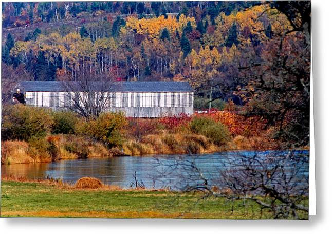Historic Architecture Greeting Cards - Bloomfield Creek Covered Bridge Autumn Colors Greeting Card by Jamie Roach