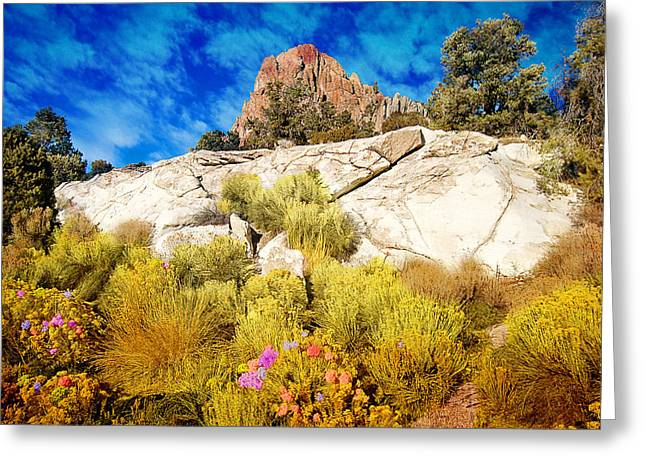 Huegel Greeting Cards - Blooming Nevada Desert near Ely Greeting Card by Gunter Nezhoda