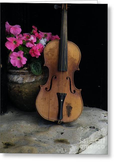 Flower Still Life Prints Greeting Cards - Blooms And Strings Greeting Card by Joe Jake Pratt