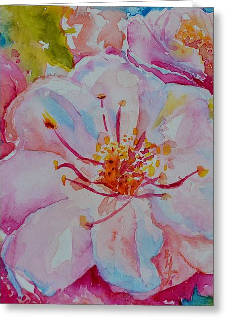 Blossom Greeting Card by Beverley Harper Tinsley