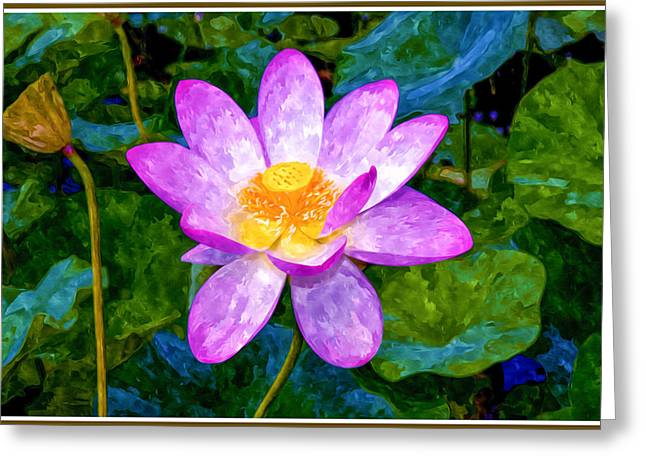 Blossom Pink Lotus Flower Greeting Card by Lanjee Chee