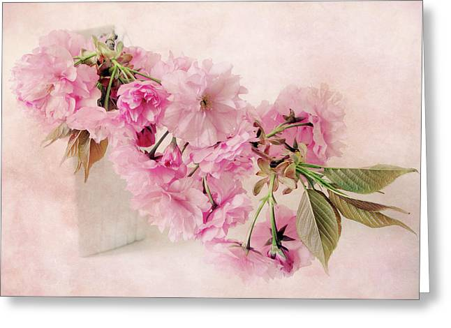 Pink Flower Branch Digital Art Greeting Cards - Blossom Still Life Greeting Card by Jessica Jenney