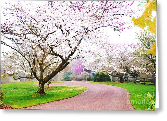 Fantasy Tree Mixed Media Greeting Cards - Blossoming Path Greeting Card by Anahi DeCanio