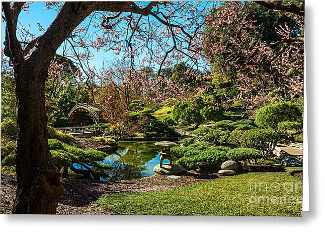 Blossoms In The Garden Greeting Card by Jamie Pham