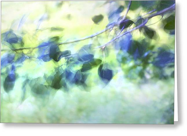 Paint Effect Greeting Cards - Blowin In The Wind Greeting Card by Theresa Tahara