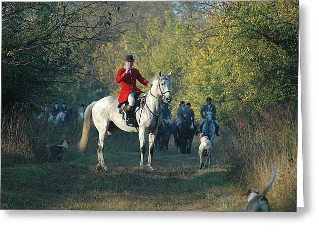 Foxhunting Greeting Cards - Blowing His Horn Greeting Card by Nancy Milburn Kleck
