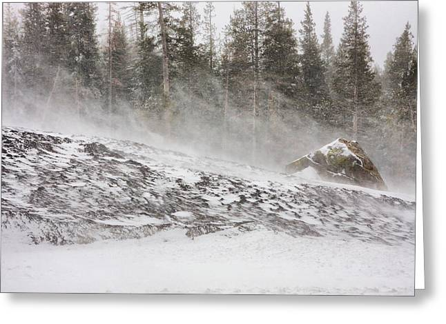 Blowing Snow Greeting Cards - Blowing Snow Greeting Card by Marc Crumpler