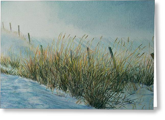Blowing Snow Greeting Card by Nick Payne