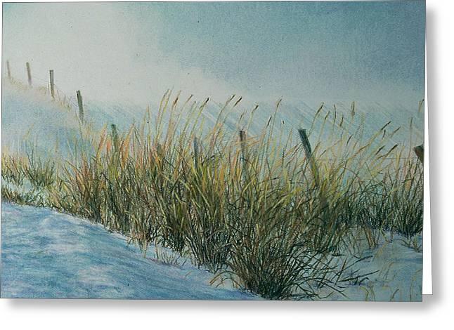 Birdseye Greeting Cards - Blowing Snow Greeting Card by Nick Payne