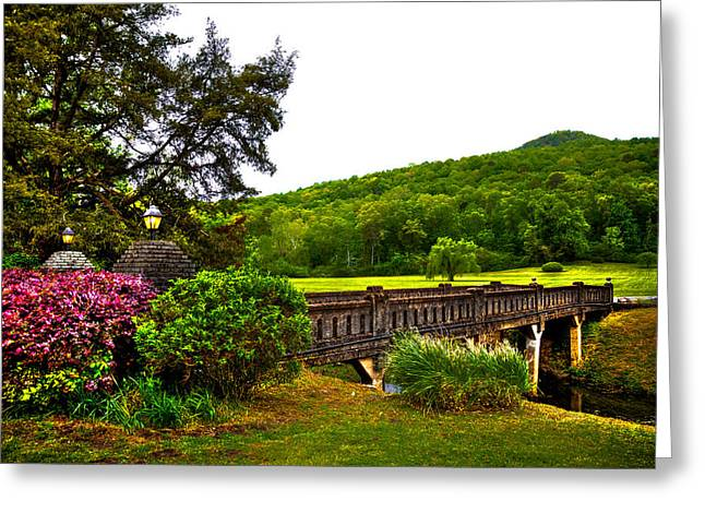 Bridge Of Flowers Greeting Cards - Blowing Spring Park Greeting Card by David Patterson